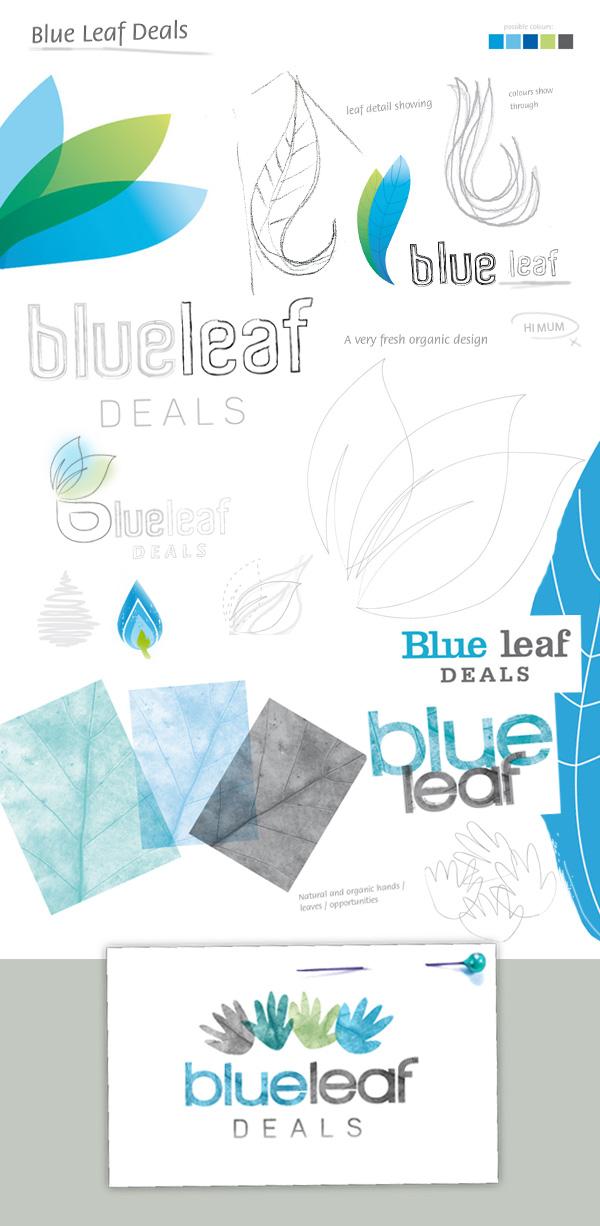 blueleaf